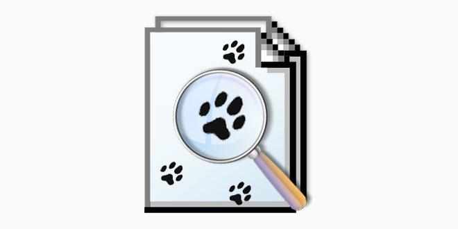 EF Find - Datenträger Suchprogramm mit Volltextsuche