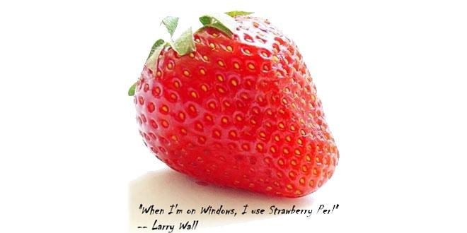 Strawberry Perl - Perl Applikationen auf Windows