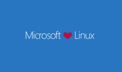 Linux: Entwickler von InSync wollen OneDrive zu Linux bringen
