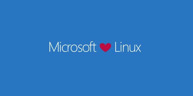 Nach Beitritt zum OIN: FSF und SFC äußern Erwartungen an Microsoft