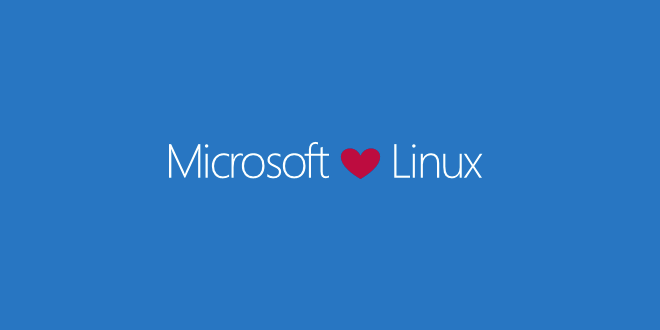 Microsoft schützt das Produkt, an dem seine Zukunft hängt