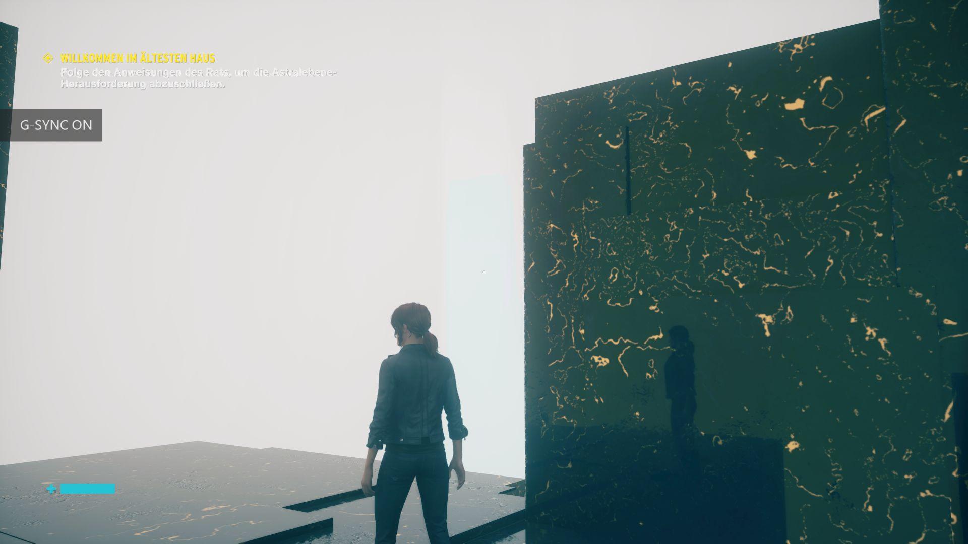 Das Game Control in einer Developer Version