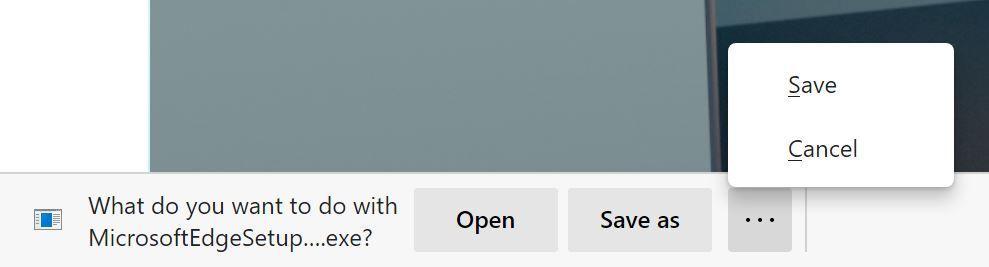 Microsoft Edge Downloadmenue