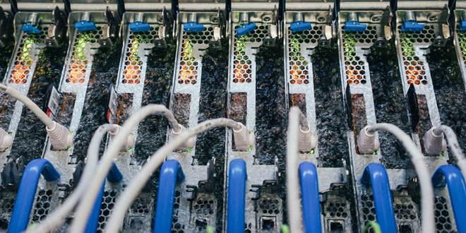 Cloud-Server gehen baden: Microsoft experimentiert mit Flüssigkühlung