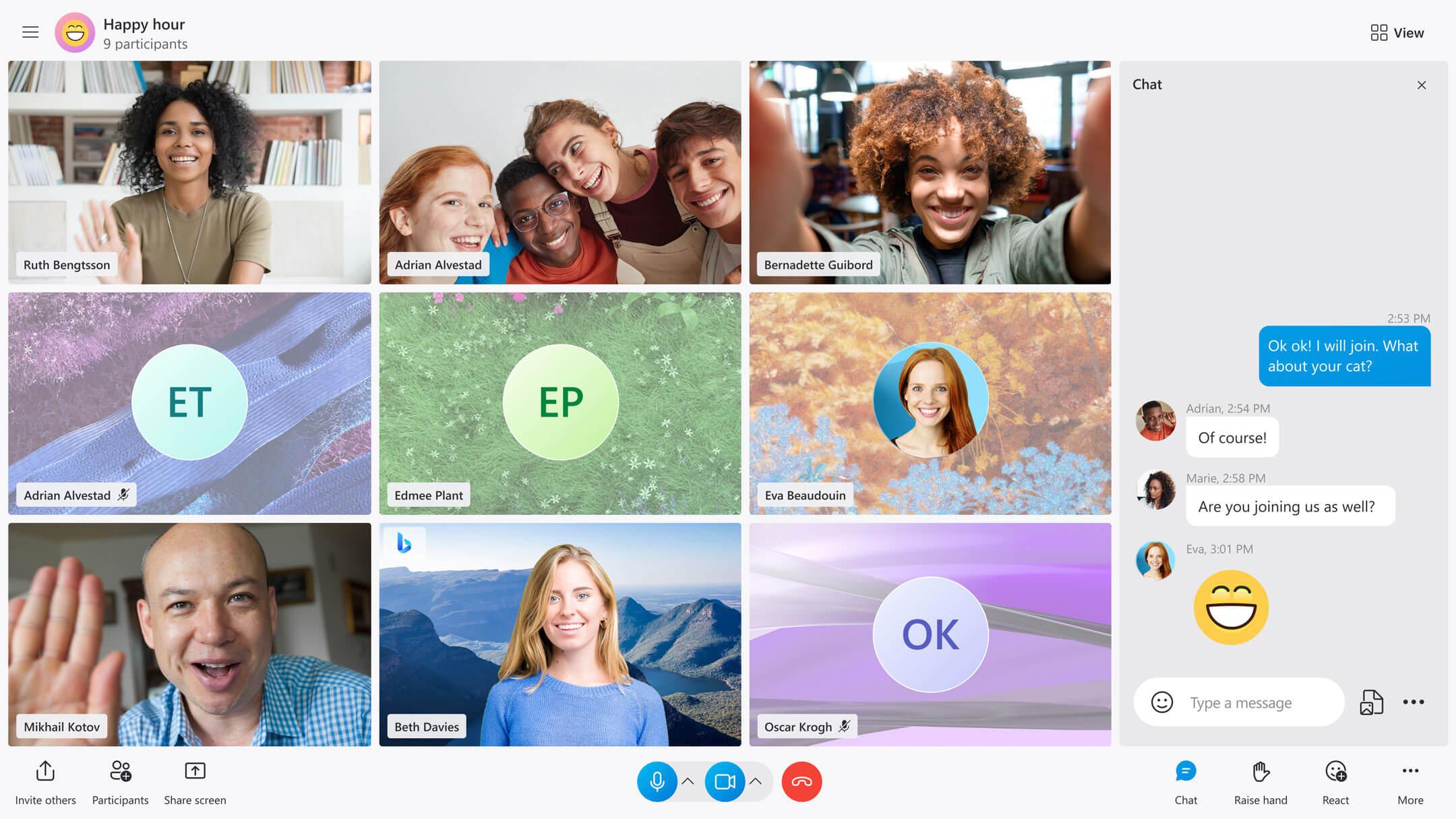 Skype Anrufansicht