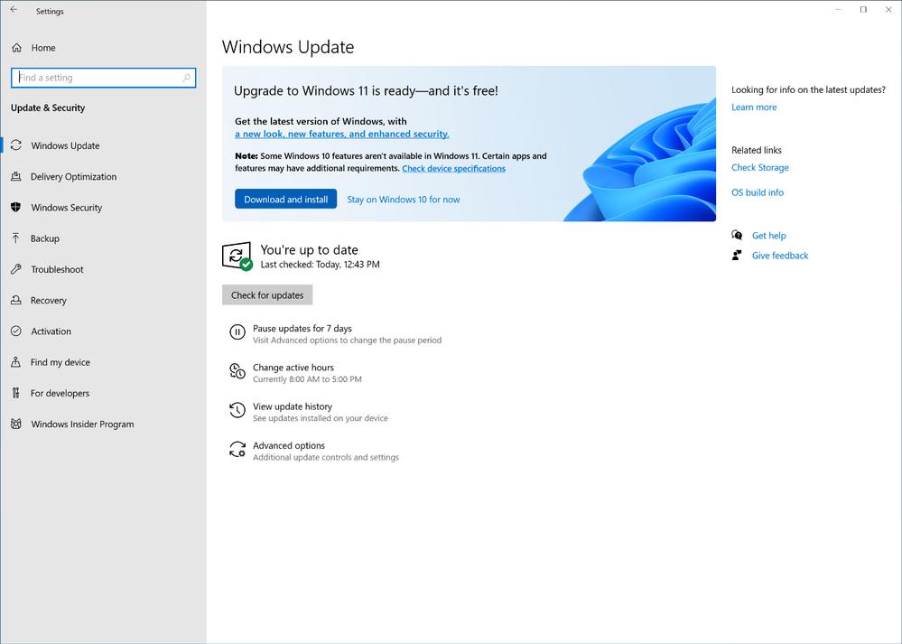 Windows 11 Upgrade Meldung