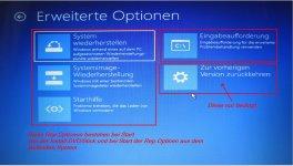 1Rep.Optionen-W10(3).jpg