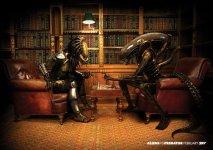 aliens_vs_predator_wallpaper.jpg