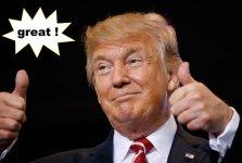 Meinung Donald.jpg